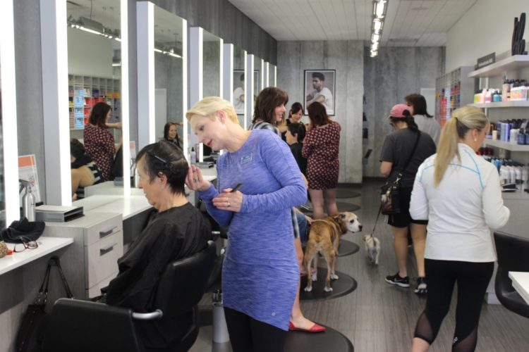 Pamper yourself help animals in at mane attraction salon for Attractions salon