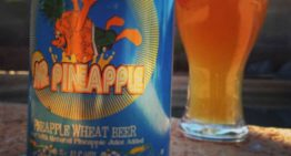 Thirsty Thursday: Local Summer Brews You Have To Try