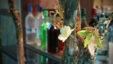 Thirsty Thursday: Summer Cocktails from Osaka Japanese Steakhouse