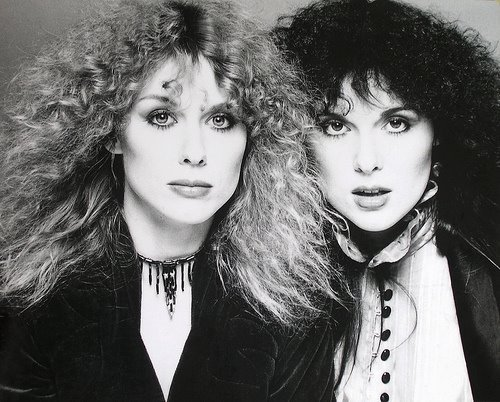 Ann-and-Nancy-Wilson-female-rock-musicians-15163022-500-402