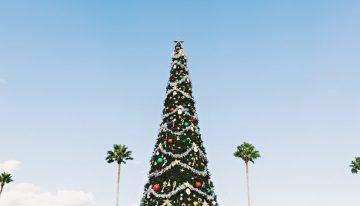 Top 5 Phoenix Christmas Events