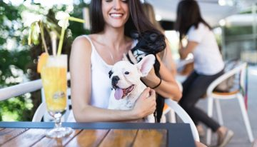Cocktails and Canines: Dog-Friendly Patios and Bars