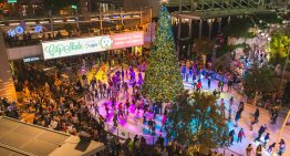 CitySkate Returns to CityScape With New Interactive Tree