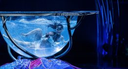 Cirque du Soleil is Returning to Phoenix With its New Show AMALUNA