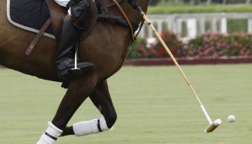 Headliners Announced for The Scottsdale Polo Championship