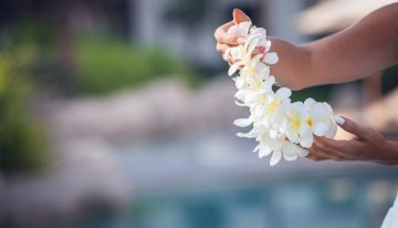 Luau for the Dream Returns to Hotel Valley Ho