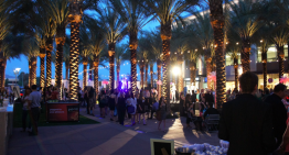 Best Of Our Valley 2014 Bash: A Quiz