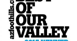 Best of Our Valley 2015 Winner Logos