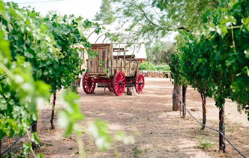 Best Northern Arizona Winery D.A. Ranch