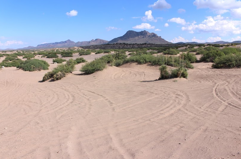 Best Southern Arizona Adventure Hot Well Dunes Recreation Area