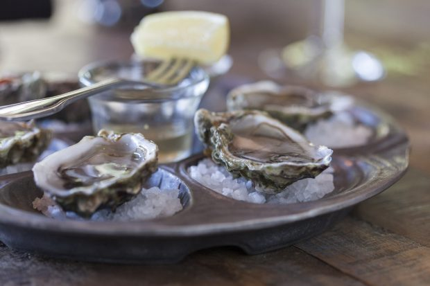The living room Oysters_6747