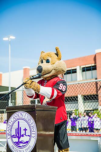 Gallery - Arizona Coyotes DEK Hockey Rink Unveiling at GCU