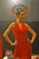 2011 Celebrity Catwalk-For-A-Cause at Barrett-Jackson