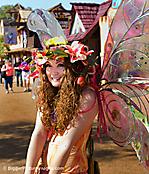 2014 Arizona Renaissance Festival (II)