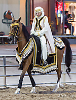 60th Annual Scottsdale Arabian Horse Show