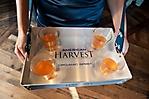 american_harvest_phoenix_launch-006