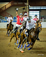 Arena Polo at Barrett-Jackson - Townsend Cup (III)