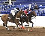 Arena Polo at Barrett Jackson - Sherman Cup Finals
