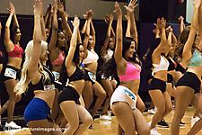 AZ Sidewinders Dance Team Auditions