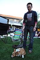biltmore-movies-in-park-11