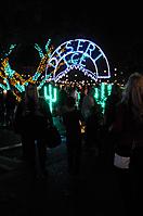 Christmas at the Princess Tree-Lighting Ceremony