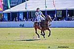 Horses and Horsepower (III)