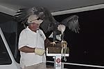 Liberty Wildlife's Cruise for Wildlife