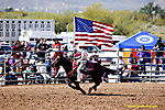 Lost Dutchman Days Rodeo 2014
