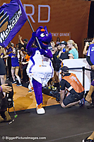 Phoenix WNBA Finals