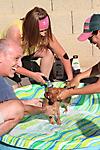 Re-Thinc 5th Annual Dog Wash