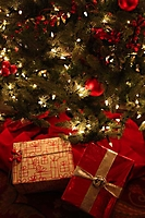 ritz-carlton-christmas-in-july-phoenix-2009_05