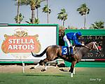 Stella Artois Kentucky Derby DayClub
