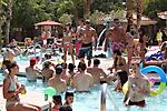 Summer of Love Pool Party at San Palacio