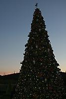 Winter Wonderland at JW Marriot Starr Pass