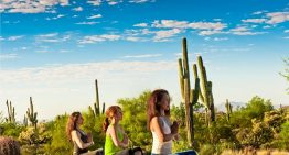 8 Healthy Hot Spots in Phoenix