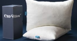 The CBD Memory Foam Pillow ~ For Your Best Night's Sleep