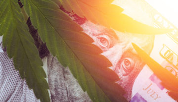 Cannabis Tourism: Opportunities, Issues, and Strategies by Enlightn & MMGY Travel Intelligence