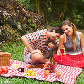 simple significant picnic date
