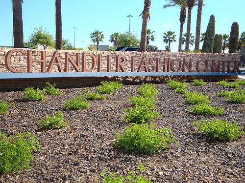 Golf Stores Tucson >> 5 New Stores at Chandler Fashion Center!