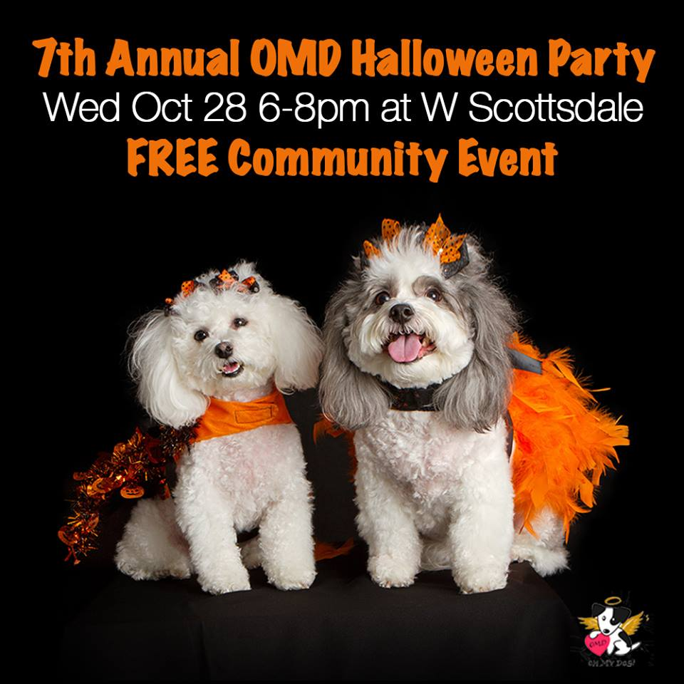 Oh My Dog Boutique Hosts 7th Annual Howloween Paw-ty at W Scottsdale