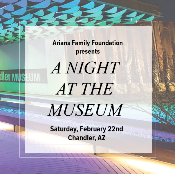 VCC - Arians Family Foundation A Night at the Museum.png