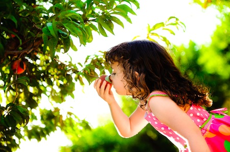 10-Things-Schnepf-Farms-Peach-Smelling-Children