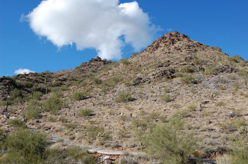 Top Spots to Have a Picnic in Phoenix - Page 2