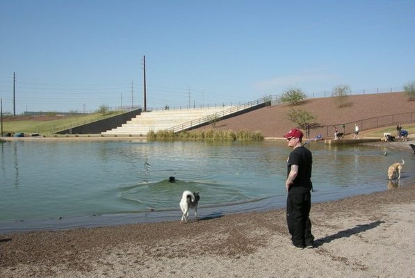 Best Place To Adopt A Dog In Phoenix