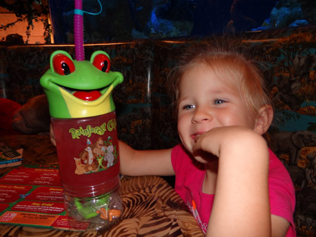rainforestcafe2