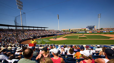 Fans at Cactus League Baseball Spring Training