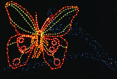 web ZooLights Butterfly