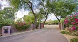 <em><u>Cionne McCarthy & Frank Aazami's Featured Listing</u></em><br> The Rocking D Ranch, Phoenix: <br>A Thoroughbred for Horses and Cars