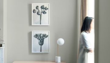 Benjamin Moore Reveals Color of the Year 2019