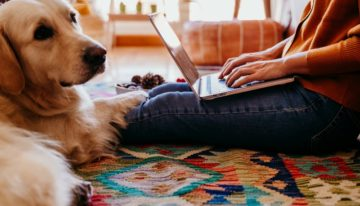 The Work-From-Home Guide for Pet Owners